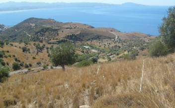 picture of pagi238 Elevated plot with sea view short drive to Agios Giorgos beach