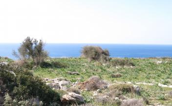 picture of pap301 Beautiful plot near Agios Pavlos with amazing sea views
